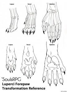 Luperci Hand Chart